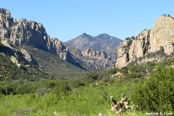 Chiricahua Mountains Cave Creek Canyon