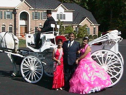Cathy, Shary, Walter, horse carriage