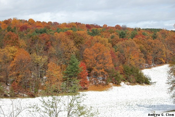 Fall colors, snow